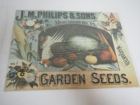 Blechschild - J. M. Philips & Sons Garden Seeds -...