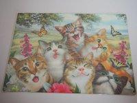 Blechschild - Katzen & Schmetterlinge - 40 x 30 cm